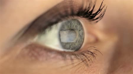 bulmak : Woman girl eye looking monitor, searching Internet google Stok Video