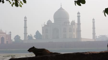 hindues : Hermosa vista del Taj Mahal en la India
