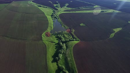 mi : Russian field from the air Stock Footage