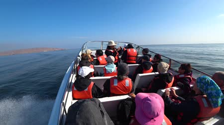 sail rock : Ballestas island, Peru - September 2017: Speed boat full of tourists sailing towards Ballestas island to watch birds and natural life, Peru