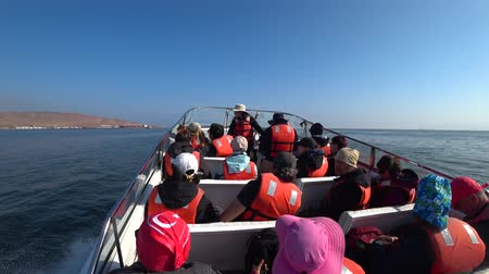 pelikan : Ballestas island, Peru - September 2017: Speed boat full of tourists sailing towards Ballestas island to watch birds and natural life, Peru