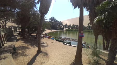 vaha : Huacachina, Peru - September 2017: View of Huacachina oasis beneath the palm trees near the desert, Peru Stok Video