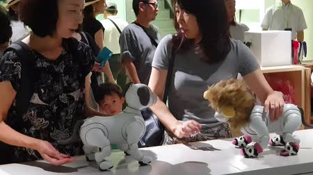 ginza : Tokyo, Japan - August 2018: Unknown women interacting with Sony Aibo dog robots in a Sony showroom Stock Footage