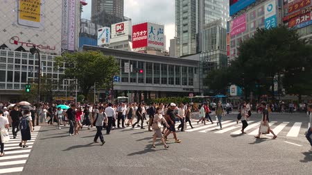 crosswalk : Tokyo, Japan - August 2018: City pedestrian traffic of people crossing the famous Shibuya intersection