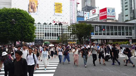 crossing road : Tokyo, Japan - August 2018: City pedestrian traffic of people crossing the famous Shibuya intersection