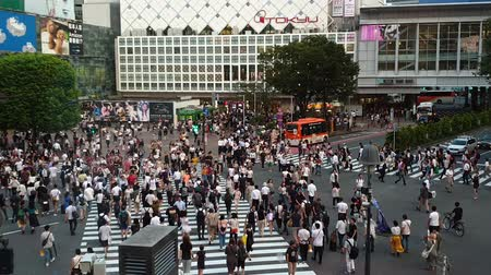 pedestrian crossing : Tokyo, Japan - August 2018: City pedestrian traffic of people crossing the famous Shibuya intersection