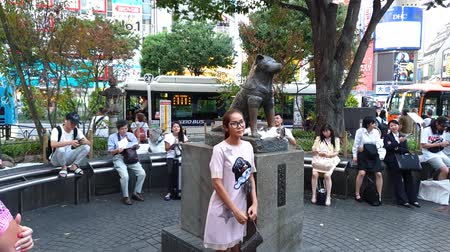 bağlılık : Tokyo, Japan - August 2018: Tourists having their photos taken by the Hachiko the dog memorial statue infront of Shibuya station. Stok Video