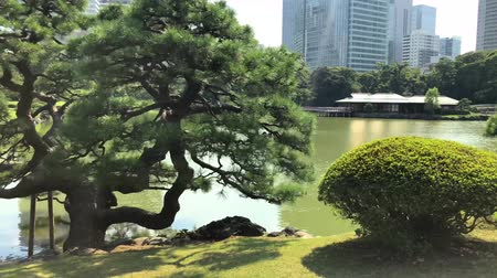 chuo city : Tokyo, Japan - August 2018: Hamarikyu Gardens is a large and attractive landscape garden in Chuo district, Sumida River
