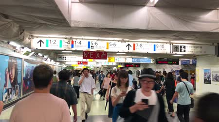 train workers : Tokyo, Japan - August 2018: Scene of crowded commuters walking through Shinjuku train station