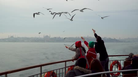 ships biscuit : istanbul, Turkey - March 2019: Unidentified people feeding seagulls with biscuits from a ferry
