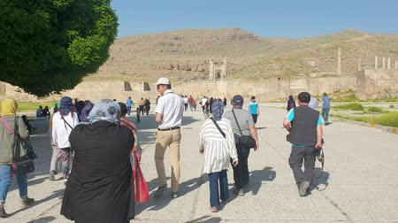 debat : Persapolis, Iran - May 2019: Ruins of historical city of Persapolis in Shiraz Stockvideo