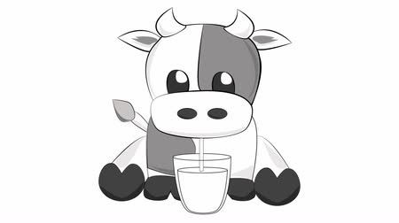 скот : Cute cow drinking milk Стоковые видеозаписи