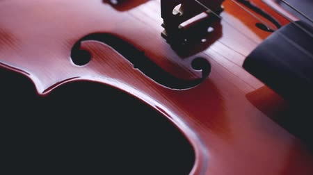 String music instruments and arts. Close up violin on white background.Classic music and musical culture and entertainment Stock Footage