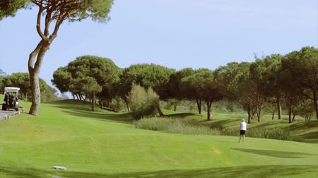 поле для гольфа : Golf tee shot, in Algarve famous course destination, Portugal.