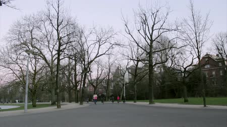 holandês : AMSTERDAM - FEBRUARY 6: people in Vondelpark, a public urban park of 47 hectares (120 acres), opened in 1865 and originally named the Stock Footage