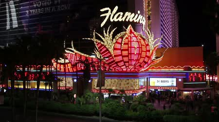 flaming : Las Vegas Boulevard and Flamingo Hotel, United States, 2017 Wideo