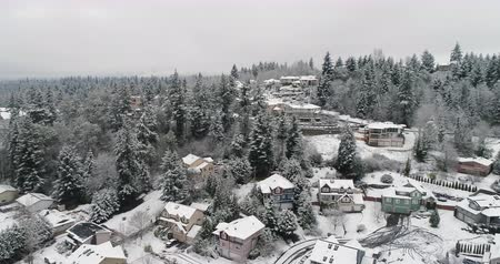 banliyö : Snowy Day City of Newcastle Washington Panoramic 360 Aerial Birds Eye View Stok Video