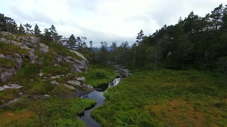 Aerial view of the creek in a mountain forest in summer Dostupné videozáznamy