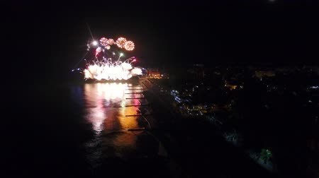 sea bird : Night view of the fireworks above the city promenade Stock Footage