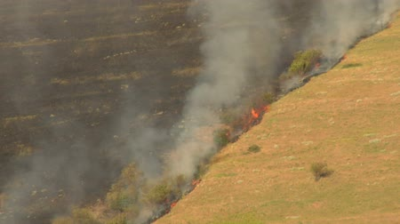 slash and burn : charred hillside burns