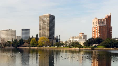 metropolitan area : Oakland California Afternoon Downtown City Skyline Lake Merritt Stock Footage