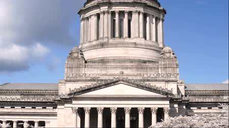 kolumna : Washington State Capital Building Olympia Springtime Cherry Blossoms Wideo