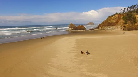 intertidal : Couple Walking Dog Oregon Coast Beach Pacific Ocean Stock Footage