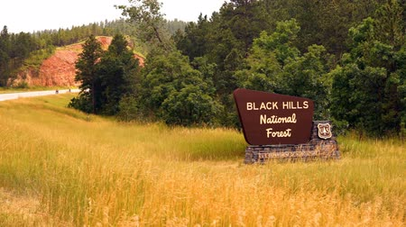 délre : Sign Says Black Hills National Forest Motorcycles Thunder By