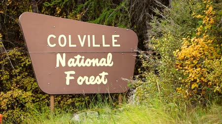 poste de sinalização : The Outdoor Wooden Roadside Sign Says Colville National Forest