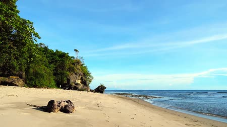 paisagem : A peaceful tropical beach shot from Siaton, Negros Oriental, Philippines. Shot during low tide, with subtle waves hitting the yellow sand beach. The video has been edited to loop seamlessly. Stock Footage