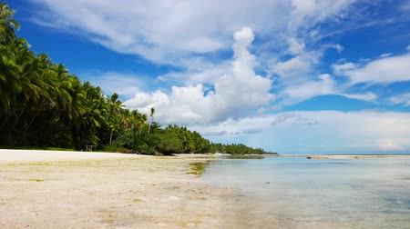 порошкообразный : A low tide clip from the powdery white sand beaches of San Juan, Siquijor Island; showing the palm trees surrounding the beach.