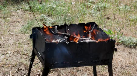 špejle : brazier barbecue grill in forest 4k