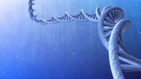 белок : 3d render of DNA helix structure. Loopable.