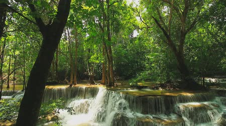 Канчанабури : Huay Mae Khamin Waterfall flows from the natural green forest in the rainy season,Kanchanaburi Province, Thailand Стоковые видеозаписи
