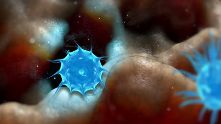 infecção : Virus bacteria infection inside organism view. Process of infection. Realistic 3d render Stock Footage