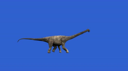 dinossauro : Dinosaur animation on green screen. GI render, realistic motion Stock Footage
