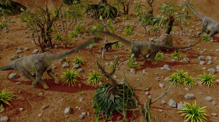 stegosaurus : Dinosaur. Prehistoric Jungle, landscape, valley with Dinosaurs. Realistic animation and motion