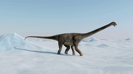 sauropod : Dinosaur. Prehistoric snow landscape, ice valley with Dinosaurs. Arctic view Stock Footage