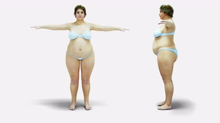 esvoaçantes : Fat women. Slimming and obesity process. Diet and health concept. Isolate. Realistic 4k animation.