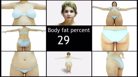 esvoaçantes : Body fat percent. Slimming and obesity process. Diet and health concept. Isolate. Realistic 4k animation.
