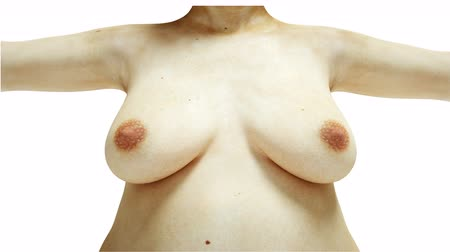 Fat nude breast. Slimming and obesity process. Women weight loss success. Diet and health concept. Isolate. realistic 4k animation.
