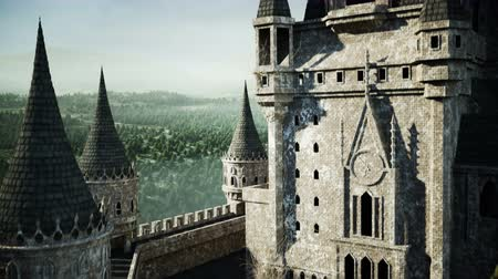 stories : Old fairytale castle on the hill. aerial view. Realistic 4k animation.