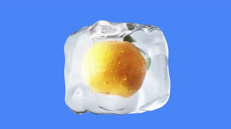 апельсины : Oranges rotate in ice cubes. Food and broadcast concept. Realistic ice materials. Isolate on green screen. 4K animation.