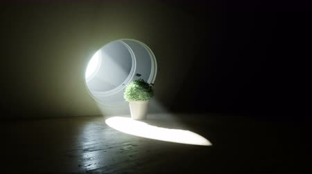 коридор : Futuristic room with flower pot and butterflyes around. Volumetric light. Future concept. Realistic 4k animation.