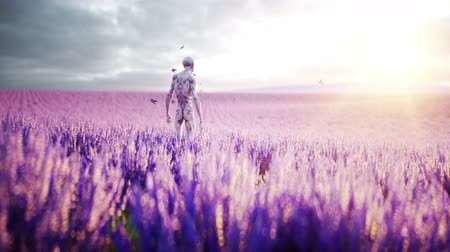 lavender field : Alien with butterflies in lavender field. concept of UFO. Realistic 4k animation.