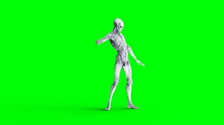 light skin : Funny alien dancing hip hop. Realistic motion and skin shaders. 4K green screen footage.