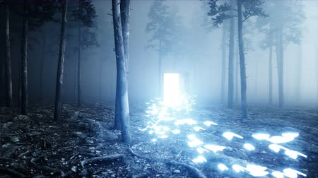 motyl : Glowing butterflies in fog night forest. Light portal door. Mistic and magic concept. Realistic 4k animation.