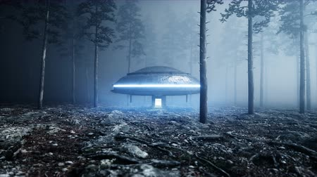 kanlı : UFO in fog night forest. landing place. 4K animation. Stok Video