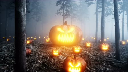 doğa arka plan : scary gigant pumpkin in fog night forest. Fear and horror. Mistic and halloween concept. Realistic 4K animation.