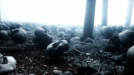 маска : Scary old skulls in fog night forest. Fear and horror. Mistic and apocalypse concept. Realistic 4K animation.